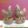 Gà đẻ trứng vàng, kim tiền vàng, gà đồng phong thủy