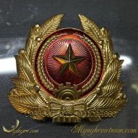huy hiệu quân đội bằng đồng, quân đội nhân dân việt nam 4