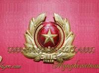 huy hiệu quân đội bằng đồng, quân đội nhân dân việt nam