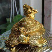rùa đầu rồng long quy lưng bát quái lưng tiền