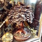 cây tiền đồng, vật phẩm phong thủy chiêu tài, cây tiền phong thủy